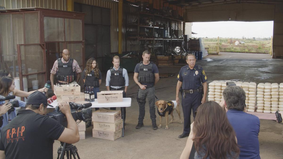 Hawaii Five-0 8.02 Press Release, Promo, Sneak Peeks, Promo Pics